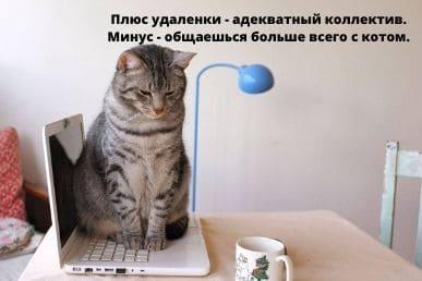 минусы работы онлайн